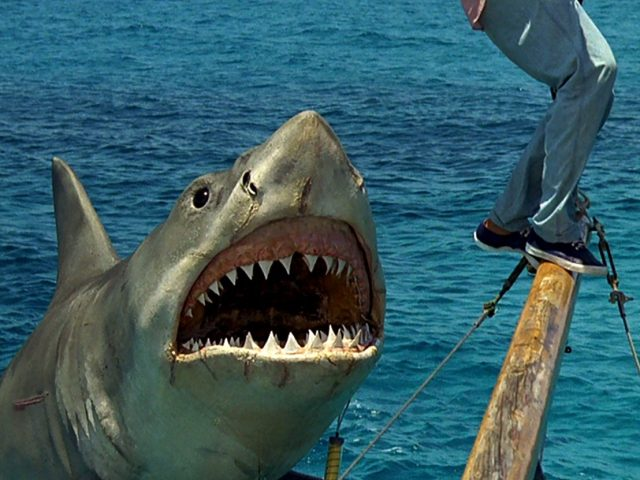 jaws-the-revenge-1108x0-c-default.jpg