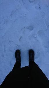 iceland feet